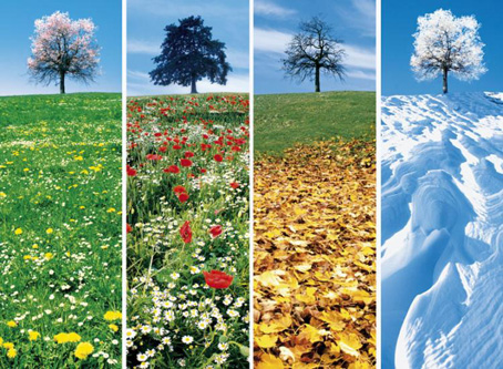 the four seasons to twitch or not to twitch tic ruffec