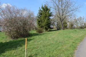 Building Plot On Approx Quater Of An Acre Close to Verteuil-Sur-Charente And Ruffec