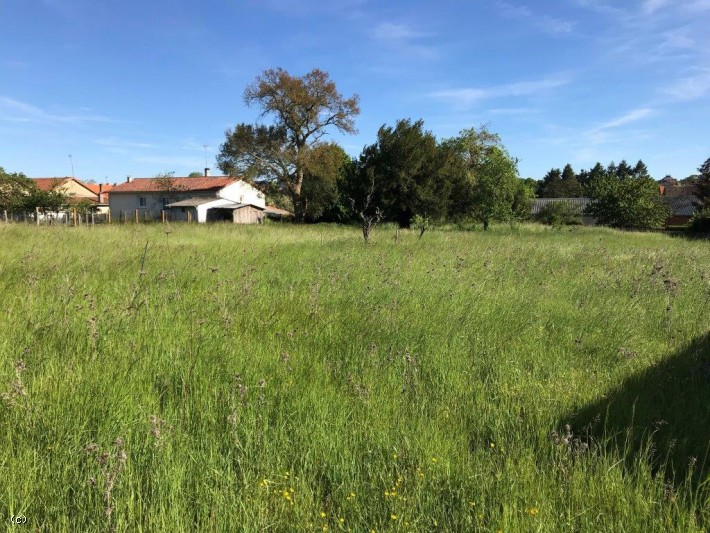 Building Plot of Land of 3710m², in Ruffec