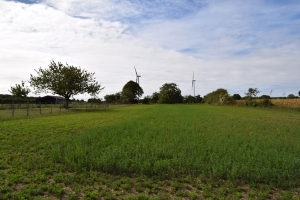 Plot Of Land On 2850m² Close To Ruffec